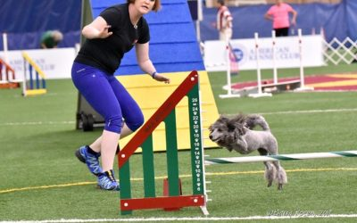 Sept 14-16, 2018 –  Columbia Agility Team – Oregon